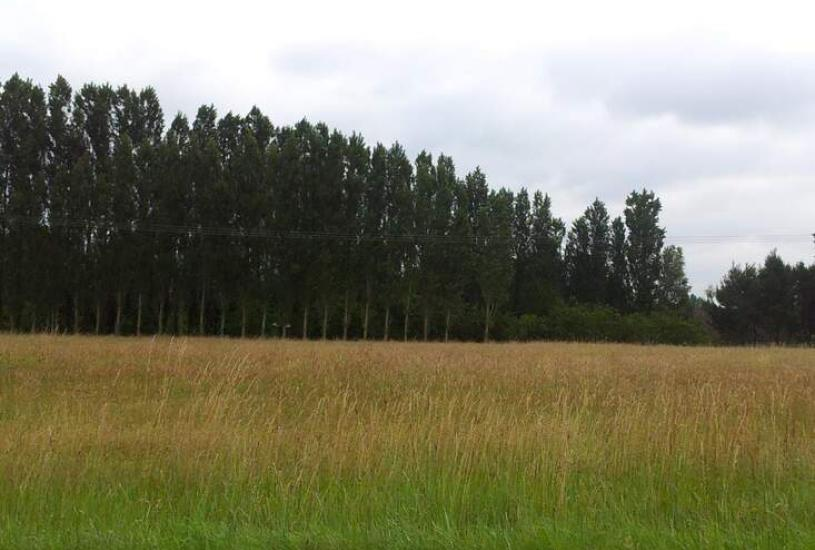 Vente Terrain à bâtir - 1000m² à Le Temple-sur-Lot (47110)