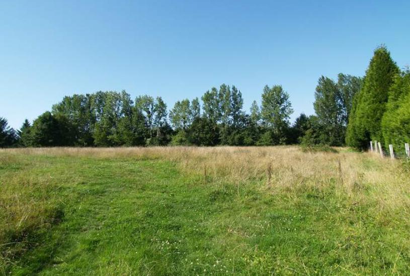 Vente Terrain à bâtir - 1700m² à Pont-l'Évêque (14130)