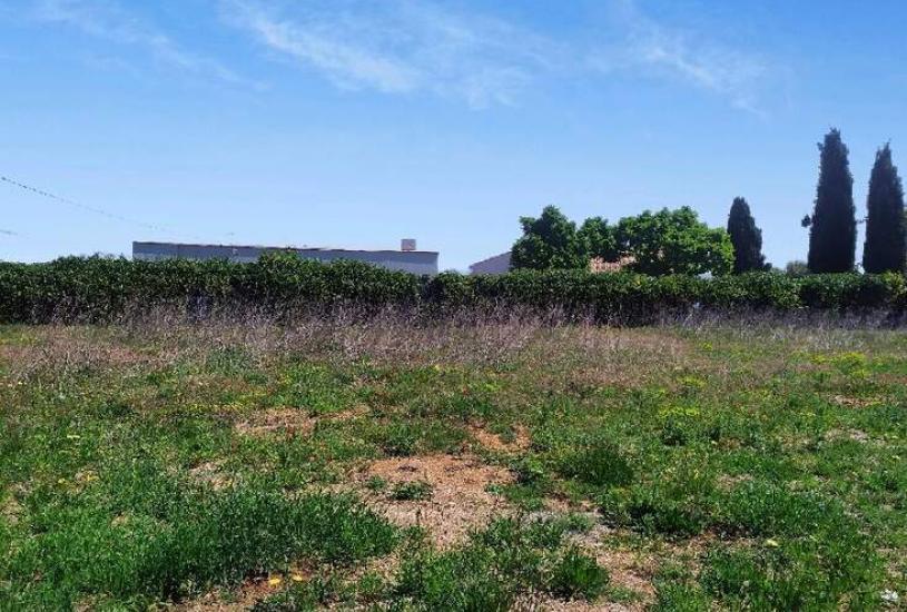 Vente Terrain à bâtir - 400m² à Saint-André-de-Sangonis (34725)